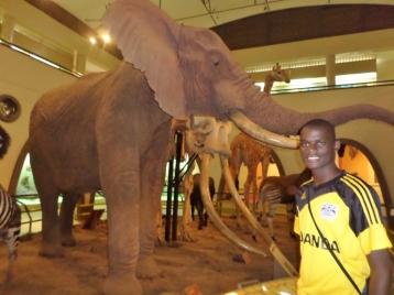 Nairobi Museum, Nairobi