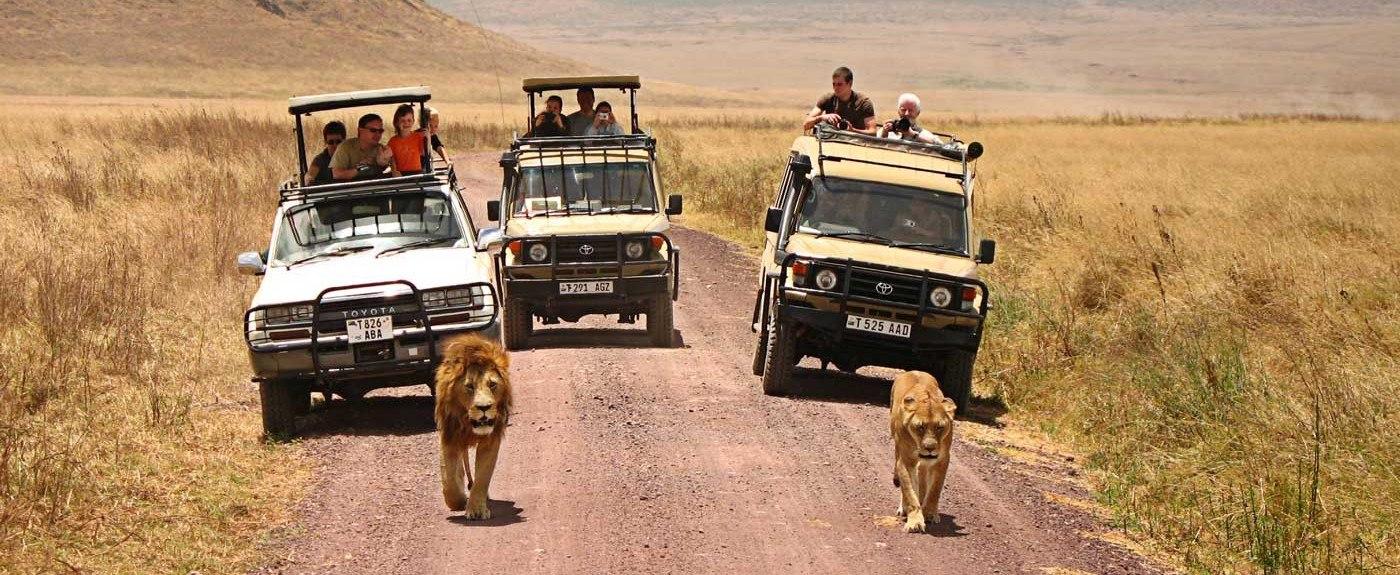 tanzania-safari-tours-1400x575.jpg